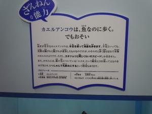 DSCN5909.JPG